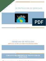 MECANISMOS DE PROTECCION DE DERECHOS (1).pptx