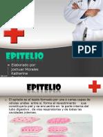 epitelio