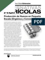 produccion-de-huevos-en-pequena-escala-organica-y
