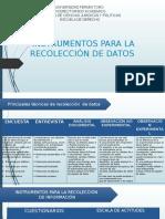 INSTRUMENTOS DE PROYECTO