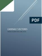 Vectores y matrices- Arenas Caldera
