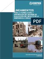 XVI-LIN-lineamientos-EIED-07-06.pdf