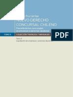 Ruz Lartiga G - Nuevo Derecho Concursal Chileno Tomo 2-convertido.pdf