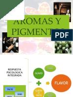 AROMAS Y PIGMENTOS  (2)