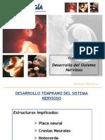 Clase 7 Embriología Sistema Nervioso.ppt