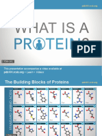 what-is-a-protein-pres.pdf