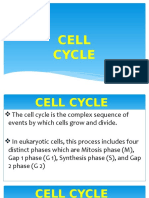cell_cycle_and_transport_mechanism.pptx