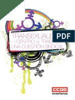 guia-transexualidad-ccoo