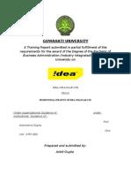 idea file