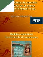1 03.03.2020 MATERIAL APOYO - PROFA -  PRISION PREVENTIVA