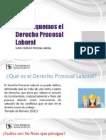 Diapositias de Derecho procesal labora
