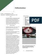 relatório bioquimica def (2)