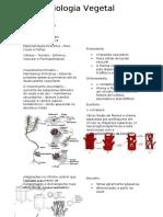 biologia Vegtal.docx