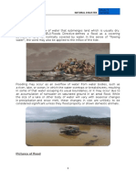 NATURAL DISASTER QALBI.docx