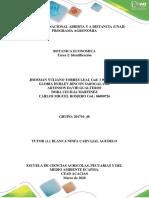 Tarea 2_Identificacion_ Grupo 48.pdf