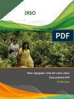 Guía-práctica-06-Camu-camu-valor-agregado-rural.pdf