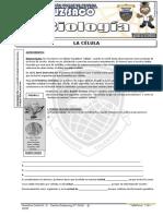 Biologia - 1er Año - II Bimestre - 2014.doc