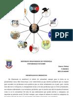 STEFANY SUAREZ MAPA MENTAL ANALISIS.pdf