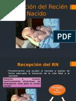 RECEPCIÓN DEL RECIÉN NACIDO.pptx
