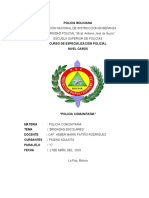 BRIGADAS ESCOLARES (1).docx