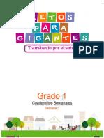 LIBRO 1 GUIA SEMANAL 3