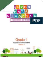 LIBRO 1 GUIA SEMANAL 5