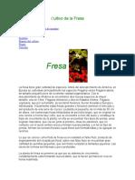 Cultivo de la Fresa.docx