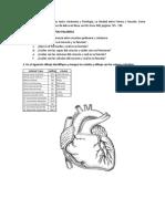 sistema cardio vascular.docx