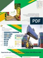 Agro exportaciones 2019-Arequipa.pptx