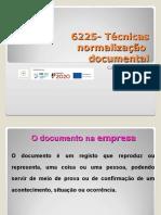 6225-TEcnicas-de-Normalizacao