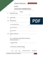 202372303-Informe-de-Consolidacion.docx