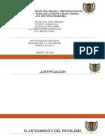 DIAP-D. PROYECTO.pptx