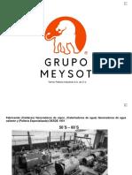 GRUPO MEYSOT.pdf