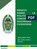 Ensayo política marco de convivencia y seguridad ciudadana