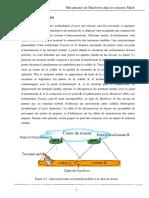 Ms.Tel.Serir+Mezerai.pdf