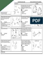 BALONMANO BÁSICO.pdf