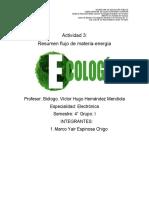 Resumen de componentes del ecosistema.docx