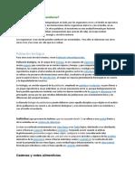 Documento 6.pdf