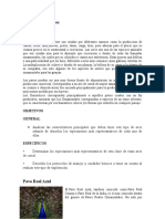 PAVOS GRUPO 3 (1)