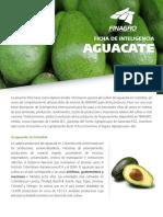 ficha_aguacate_version_ii.pdf