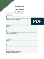 CUESTIONARIO AA4 auditoria