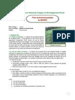 fiche technico-economique du manioc