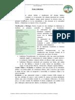 42linfticoslinfedema-linfangitis-160611055611
