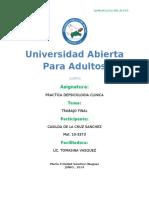 Tarea 05555555555 de Practica de Psicologia Clinica I. CASILDAAAAAA