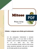1.2.  Ciclo Celular_mitose.pdf