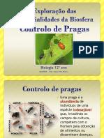 45-controlodepragas2013