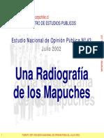 (2002) CEP - Estudio Nacional de Opinión Pública, Julio 2002. Incluye tema especial Radiografía de los Mapuches