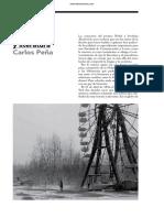 Periodismo y literatura (Carlos Peña)