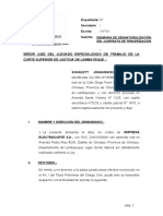 DEMANDA DE DESNATURALIZACION DEL CONTRATO DE TERCERIZACIÓN