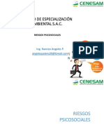 Riesgo_Psicosocial.pdf